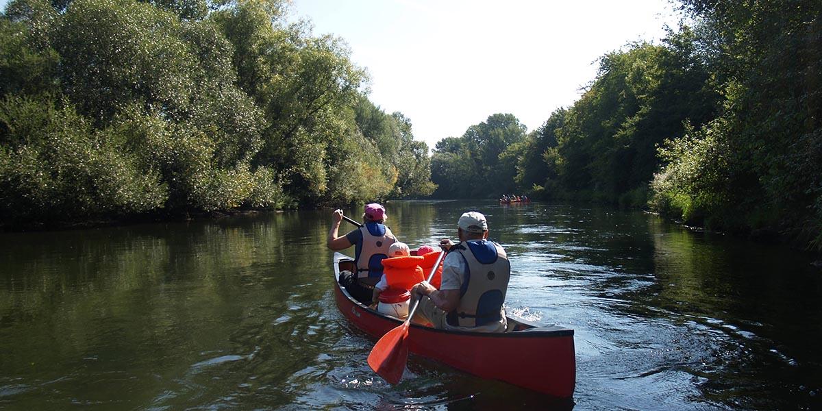 Donauausflug im Kanu