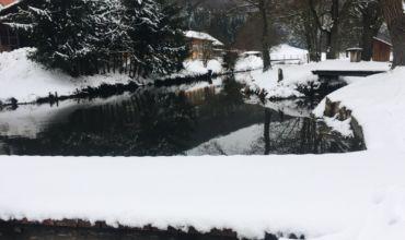 Auf den Winter folgt der Frühling und somit die neue Saison